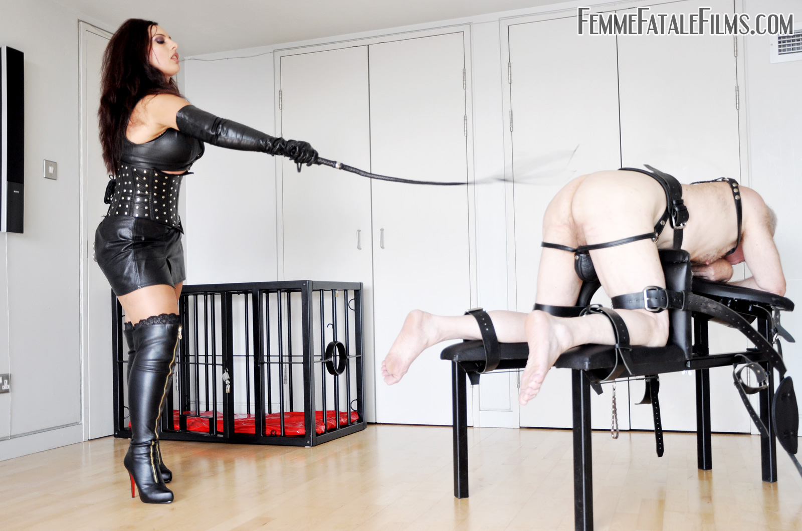 Comfort! apologise, bdsm women whipping men this rather